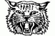 Alpena Wildcats Athletics